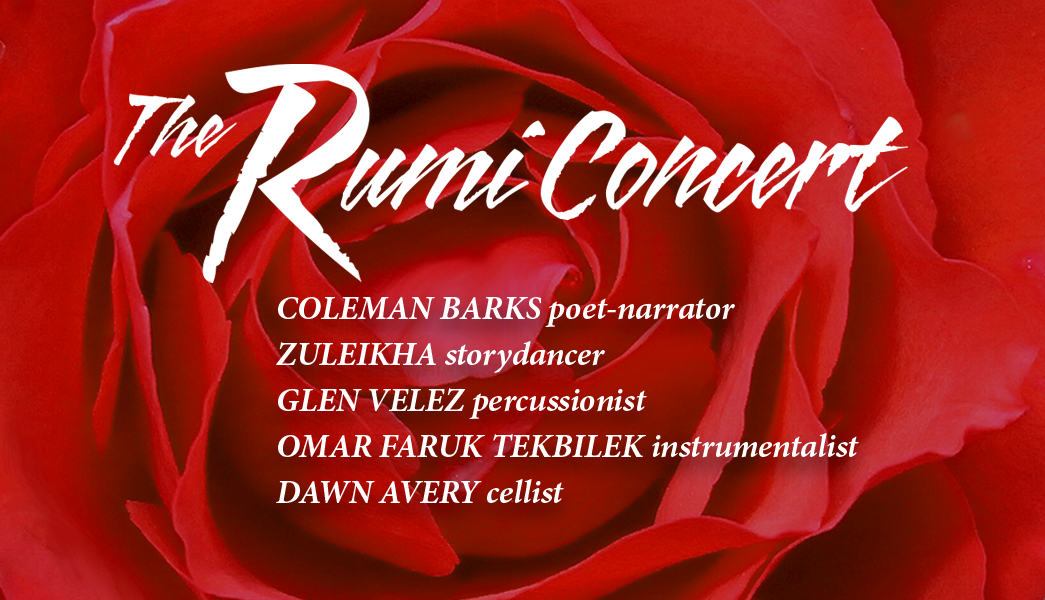 Picture of beautiful red rose with names of Rumi Concert artists